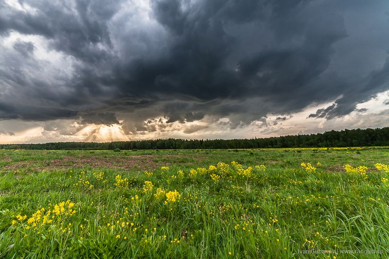небо, пейзаж, россия, ненастье, гроза, утро, поле Утреннее небоphoto preview