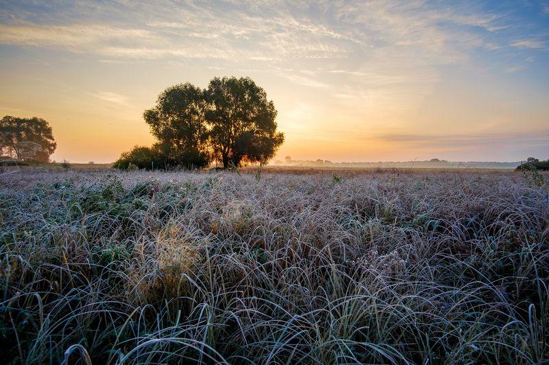 пейзаж,природа,рассвет Первый заморозокphoto preview