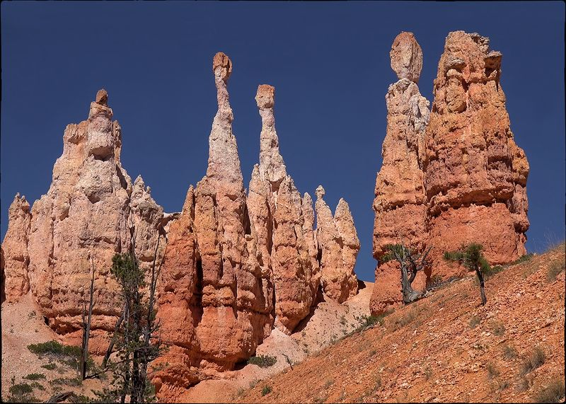 Причуды природы - Bryce Canyonphoto preview