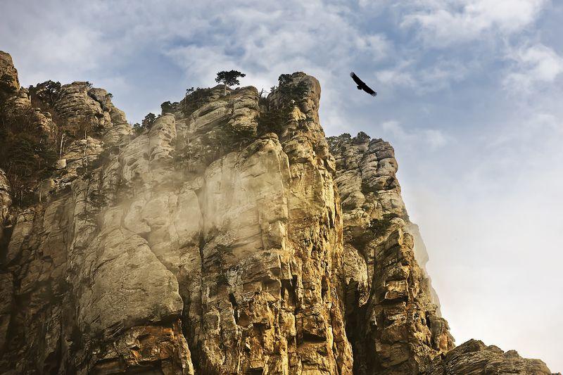 крым, димерджи, вечер, горы Аватар.photo preview