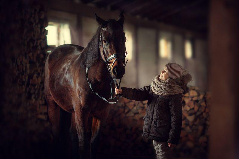 ребенок, лошадь ...photo preview