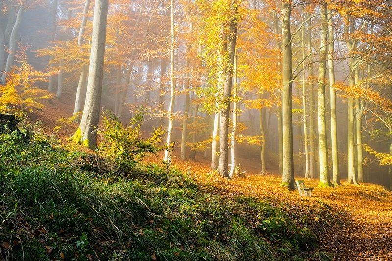 чехия карловы вары Осень в Карловых Варахphoto preview