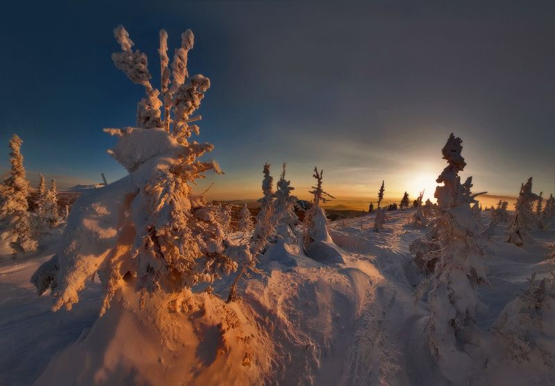 Закат Лес  зимние виды  Загадочный лесphoto preview