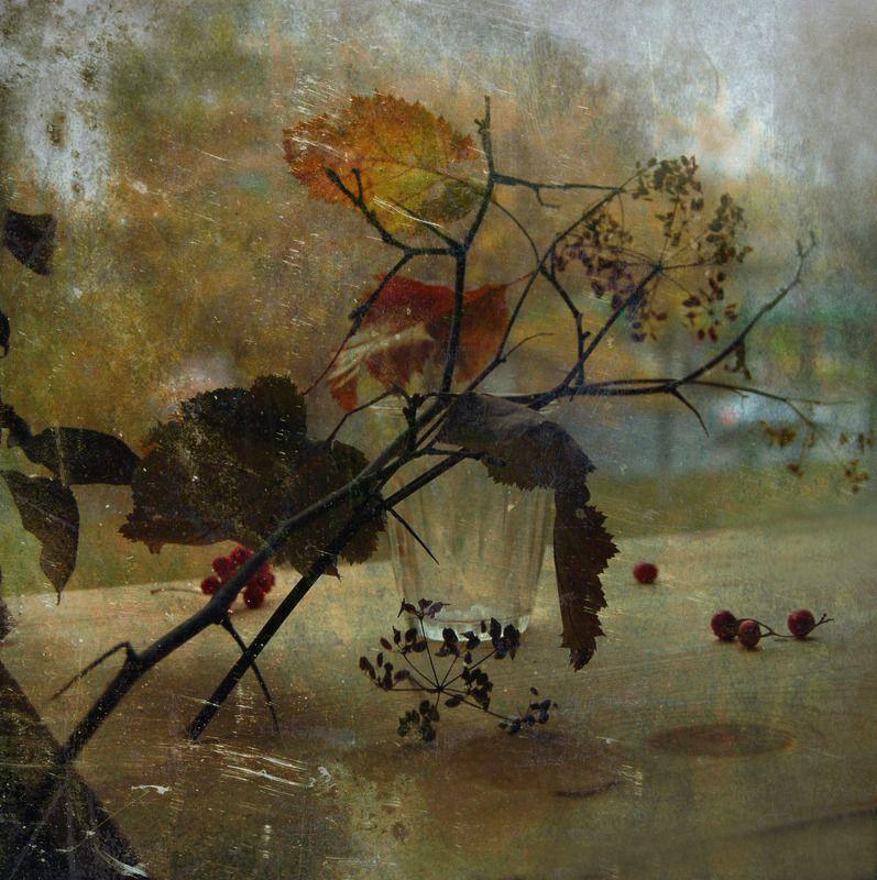осень, натюрморт -photo preview