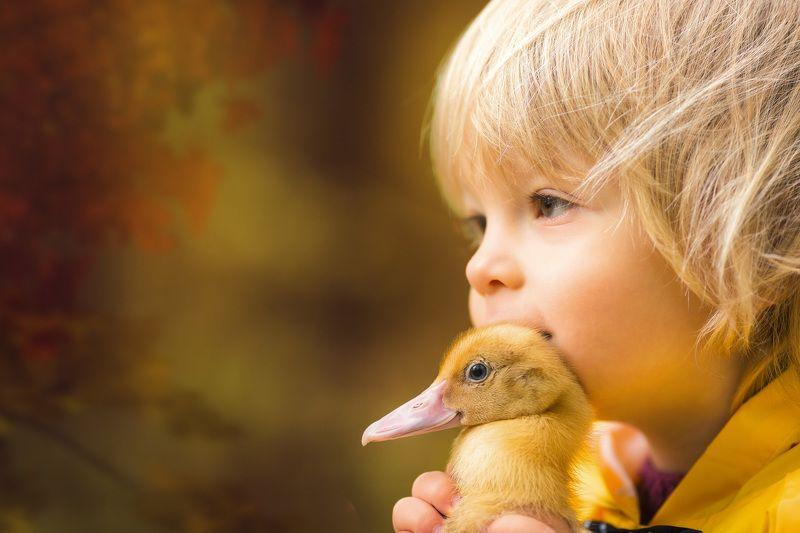 ребенок, мальчик, дети, портрет, глаза, эмоции, children, boy, детский фотограф, утята, ребята и утята photo preview