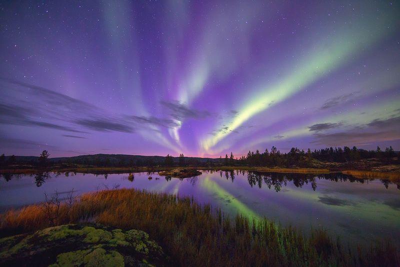 кольский п-ов, полярное сияние, северное сияние, пейзаж, природа ***photo preview