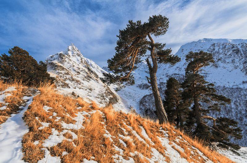 снег, осень, nikon, горы, поход, отдых, карски ***photo preview