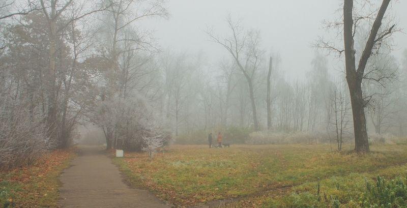 туман, город, орехово-зуево, осень, ноябрь, подмосковье ИЗМОРОЗЬ И ТУМАНphoto preview