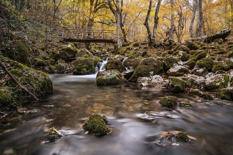 autumn, forest, river, bulgaria River in autumn in the forestphoto preview