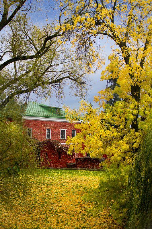 осень, листья, город, парк, вода, улица, Осень в Брестеphoto preview