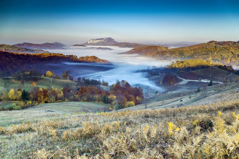 morning,mist,fog,colors,apuseni,romania,autumn,fall, When you wake up in the morning :)photo preview