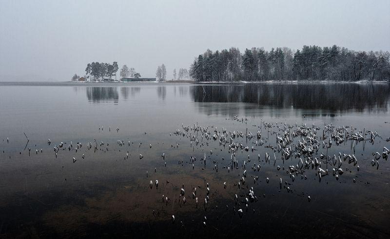 ноябрь,первоснежное,озеро,снег Из первоснежногоphoto preview