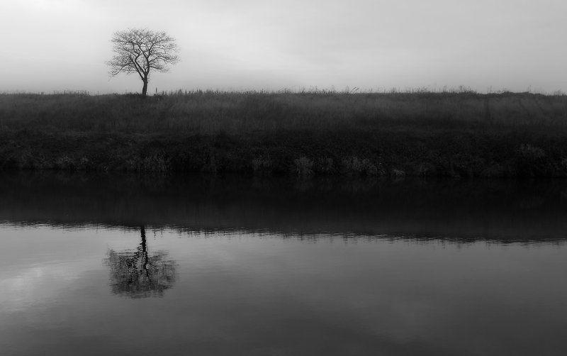 одиночество....photo preview