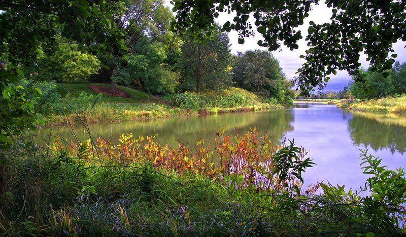 природа, пейзаж, река, лес \