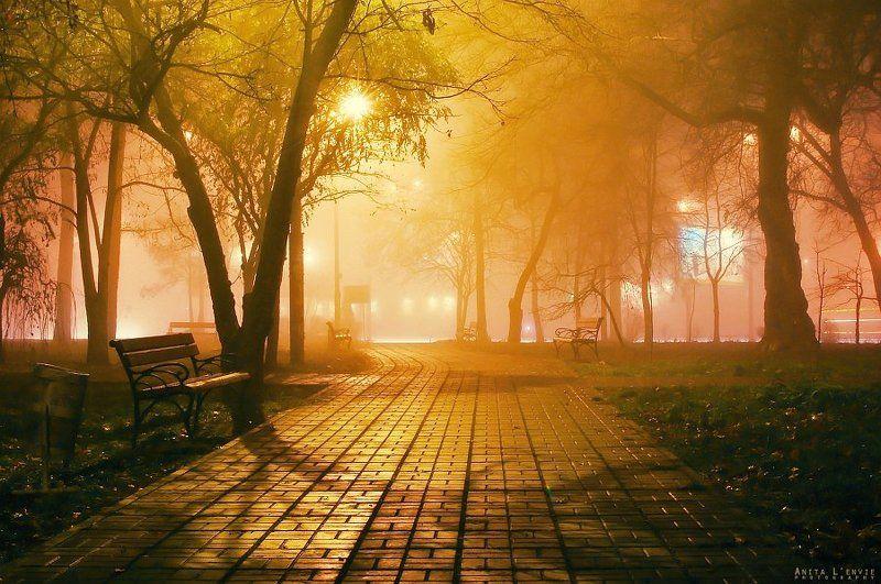 туман, город, парк туманноеphoto preview