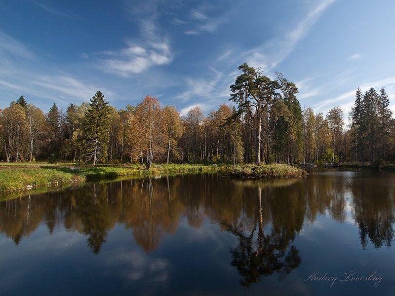 пейзаж;, природа Тургеневская осень.photo preview