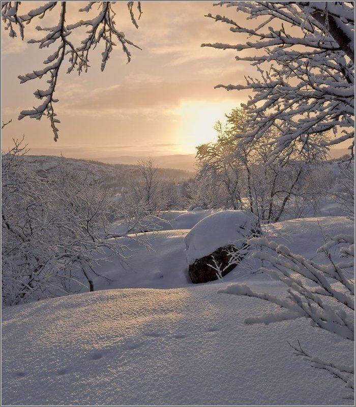 солнце, сопки, снег, следы, кольский За уходящим солнцем...photo preview