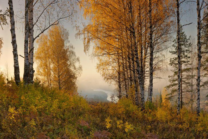 Первые октябрьские заморозкиphoto preview