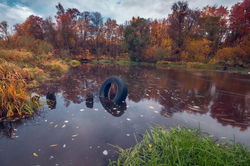 осень, река, вода, деревья, листва Круговороты осениphoto preview