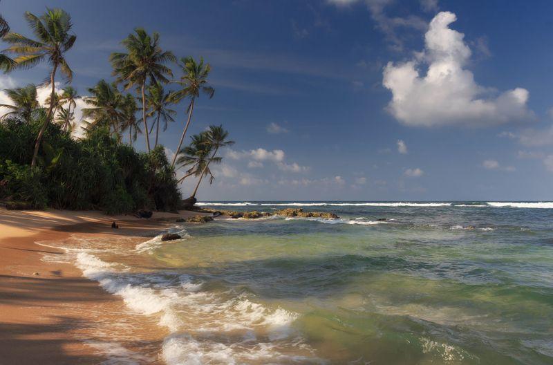 Берег пляж песок волны пальмы облака океан Шри Ланка Уголок Индийского океанаphoto preview