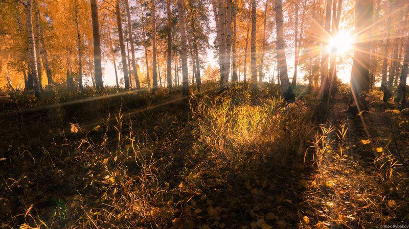 Осеннее солнце Уралаphoto preview