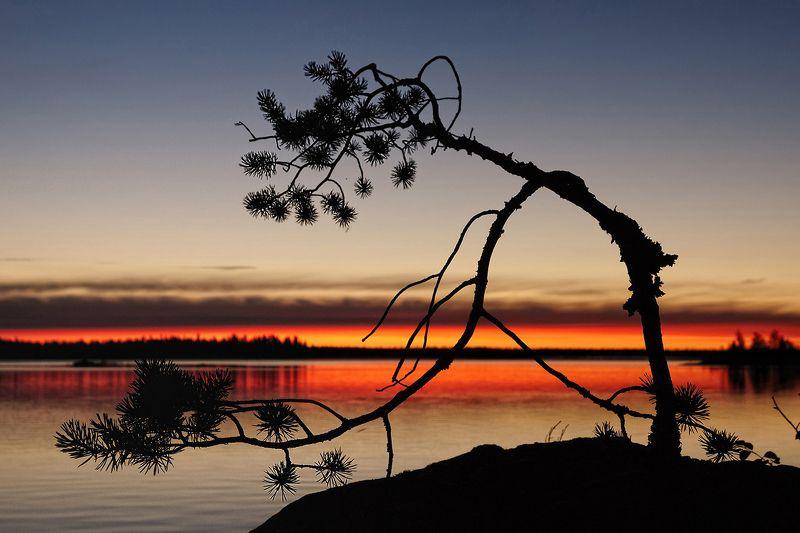 карелия, охта, воронье, озеро, d80 Карельское графитиphoto preview