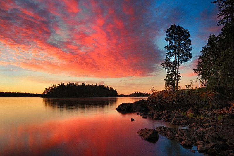 карелия, охта, воронье, закат, озеро, сосны Белые ночи на озере Вороньемphoto preview
