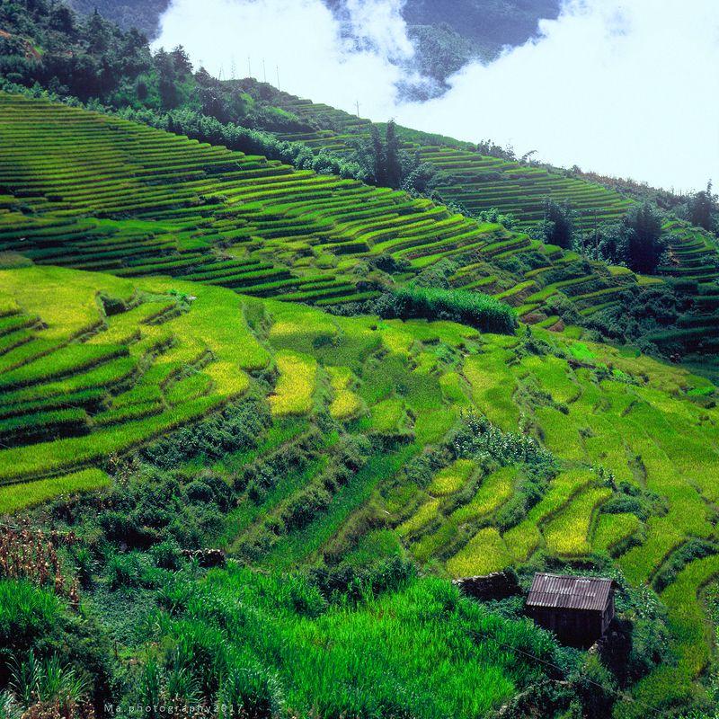 #filmslide #mediumformat #6x6 #travel #velvia50 #vietnam Y Typhoto preview