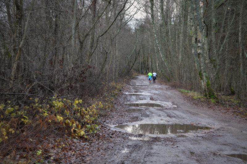 Осенний марафонphoto preview