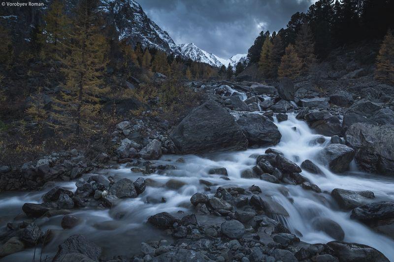 алтай, горы, горный алтай, осень. сентябрь Вечер в ущелье Актруphoto preview