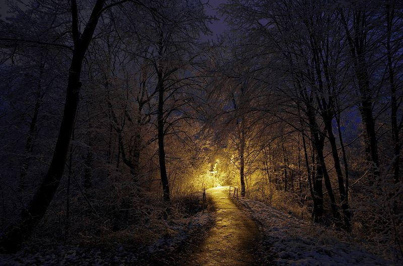 Тропинка в зимуphoto preview