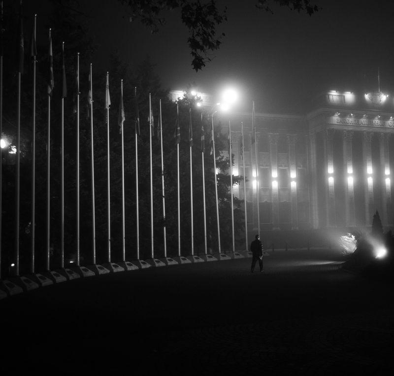ночь, туман, город, чб Туманная прогулкаphoto preview