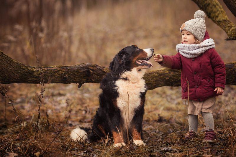 ребенок, девочка, собака, осень photo preview