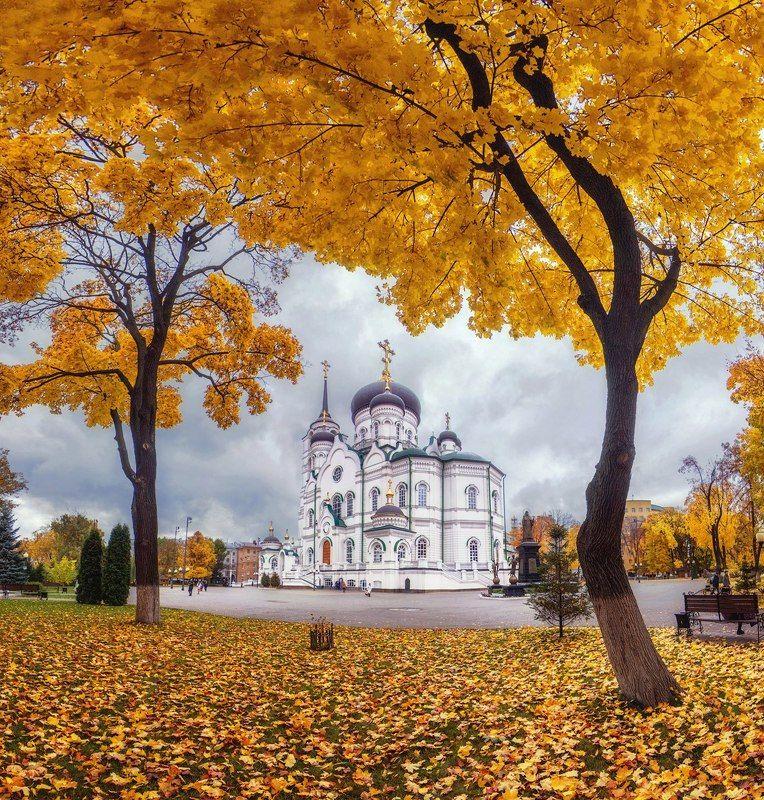 собор, архитектура, воронеж, осень Благовещенский собор в осенней листвеphoto preview