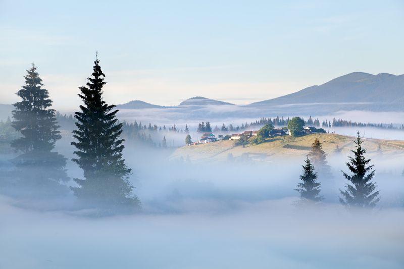 Затерянные в туманеphoto preview