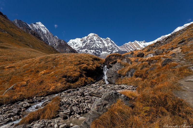 гималаи, непал, аннапурна, горы, вершина По пути к Аннапурнеphoto preview