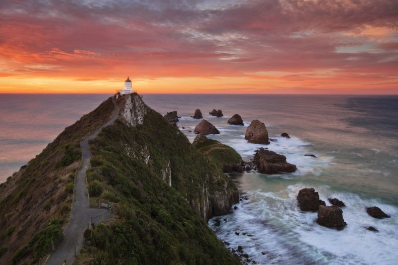 new zealand, nugget point Lighthousephoto preview