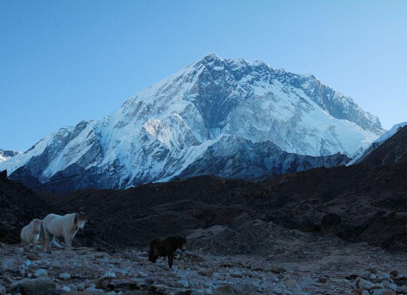 Нупцзе, Непал, Гималаи, горы,  Её Величество Нупцзе (7861м) на рассветеphoto preview