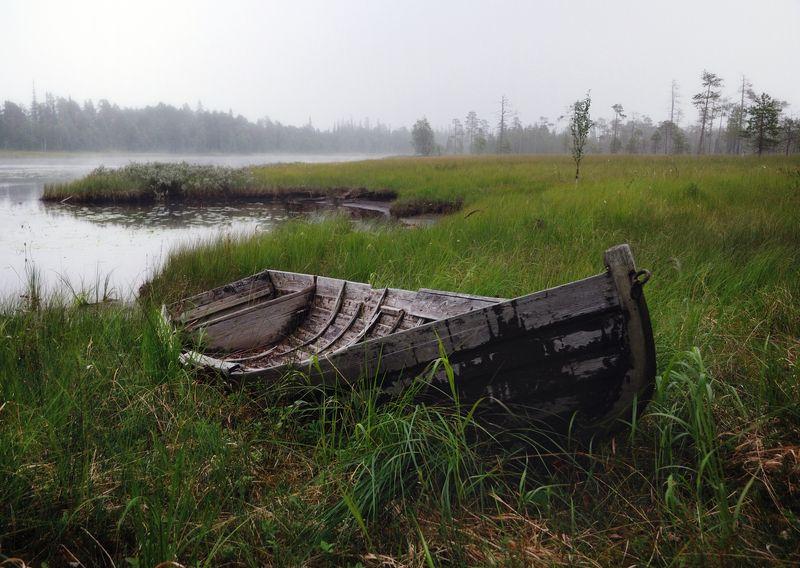 карелия, охта, болото, лодка, сосны Старая лодка на берегу Охтыphoto preview