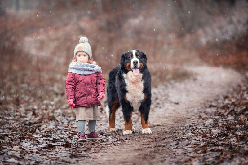 девочка, собака, прогулка, осень photo preview