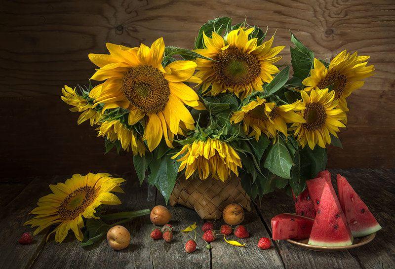 красивый натюрморт с подсолнухами,фрукты,ягоды,арбуз,абрикосы,клубника,художественное фото,искусство,творчество,костюченко людмила. Подсолнухи с арбузом.photo preview