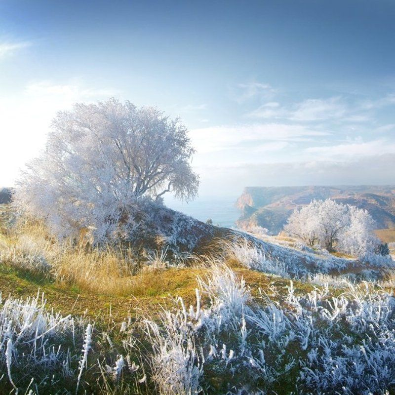 Дыхание зимы 2photo preview