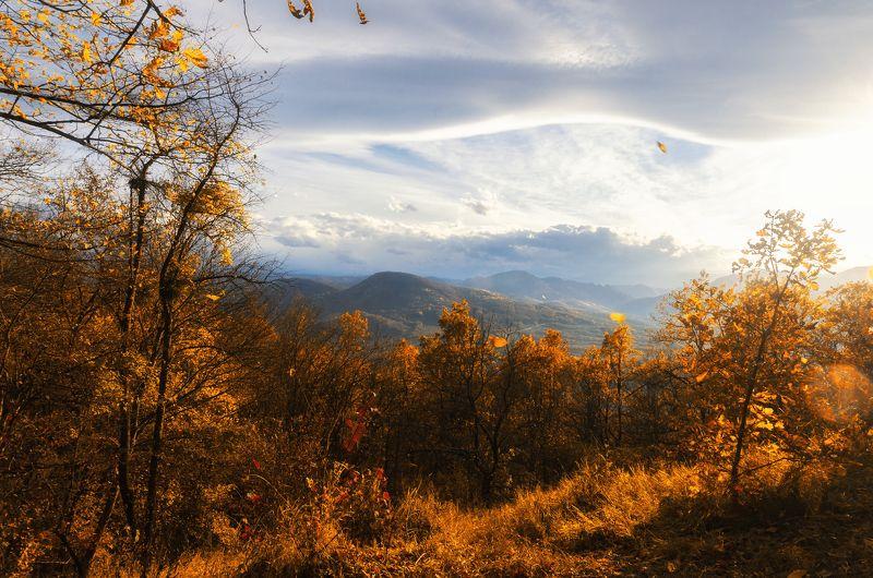 осень, свет, краски, небо, горы, nikon, лес Буйство осениphoto preview