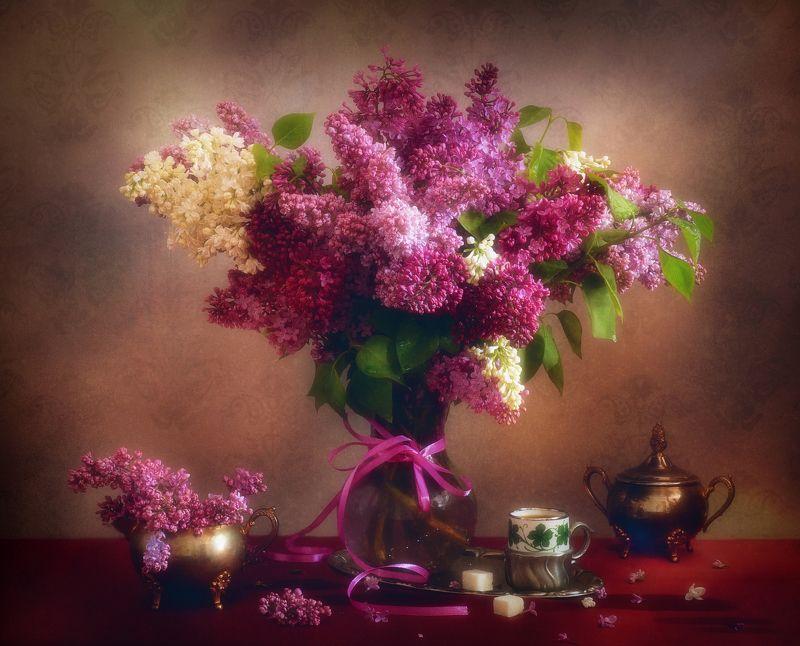 Lilac dreamphoto preview
