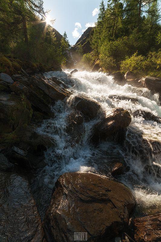 алтай, река, горы, деревья, россия, камни, Потокphoto preview