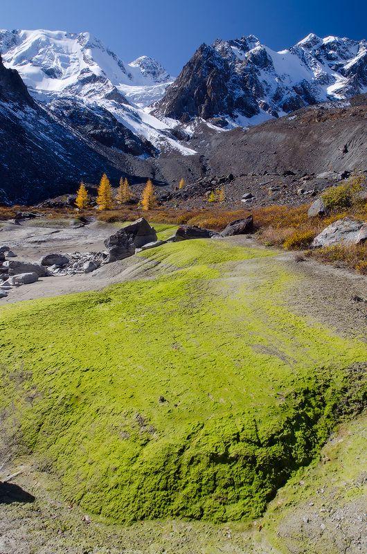 Алтай, ледник Зелинского ледниковые игры IIphoto preview
