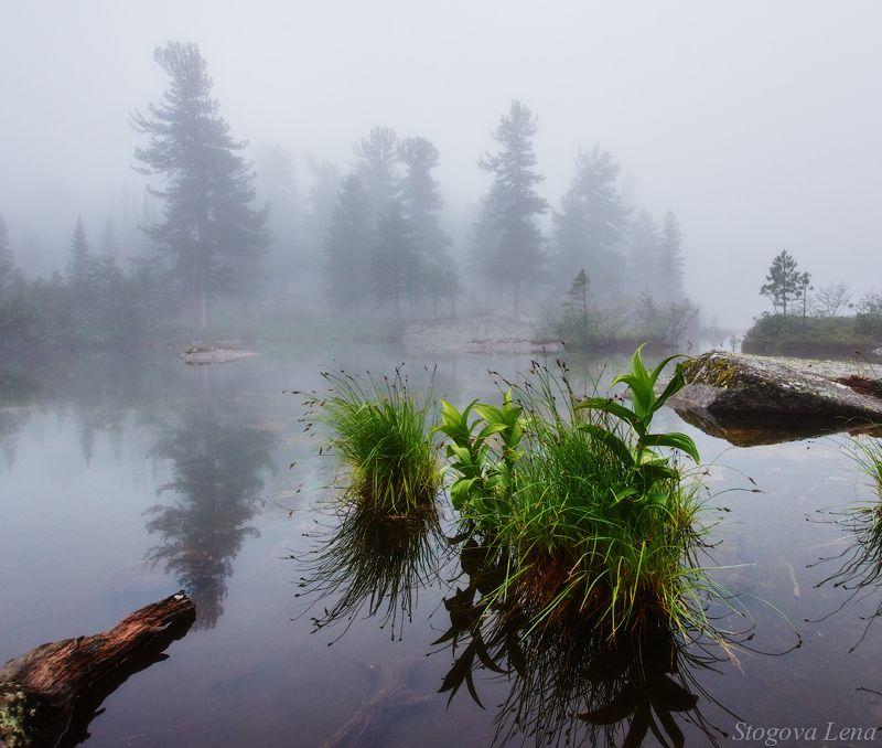 ергаки,озеро художников В туманеphoto preview
