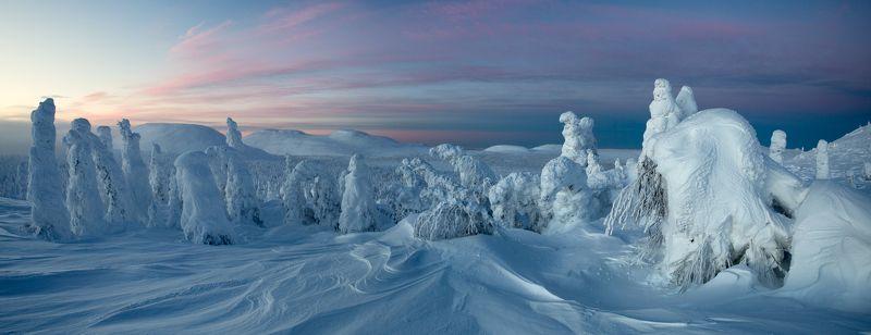 зима, горы, урал, деревья, снег, рассвет, заструги, снежные фигуры, антон селезнев Солнцепоклонники, ожидание рассветаphoto preview