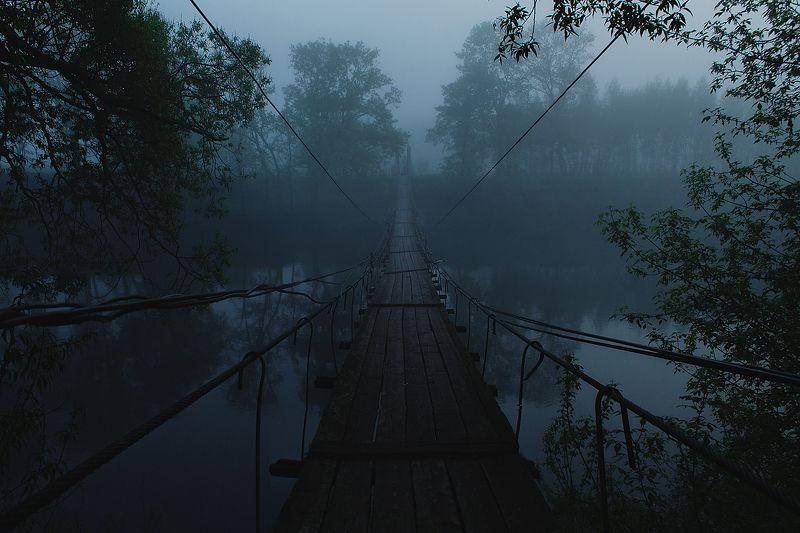 брянск, десна, хотылево, утро, рассвет, лето, мост,алексей платонов photo preview