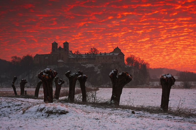 colors, sky, red, clouds, morning, sunrise, tyniec, road, willows, monastery Altocumulus cloudsphoto preview